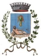 logo  comune di canicatti
